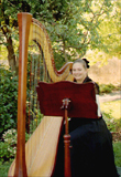 Playing harp for a wedding in Mountain View