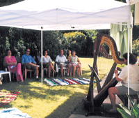 Informal harp music performance at a studio barbecue in San Jose