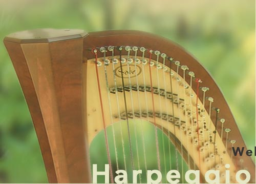 splash harp graphic